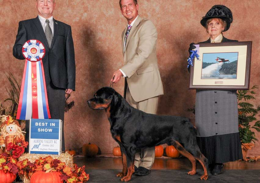Another Best in Show for Ray